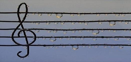 """Проект Волинської обласної філармонії """"Зіграй мені мелодію дощу"""""""